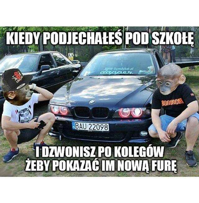 nosacze_pl5859570245.jpg
